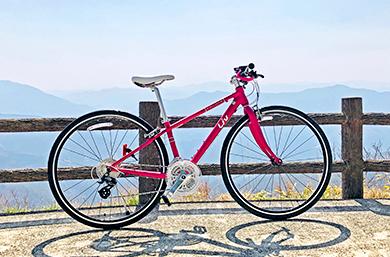 クロスバイク ジャイアントESCAPE R3